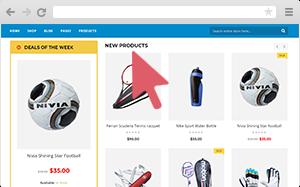 WordPress Sports store