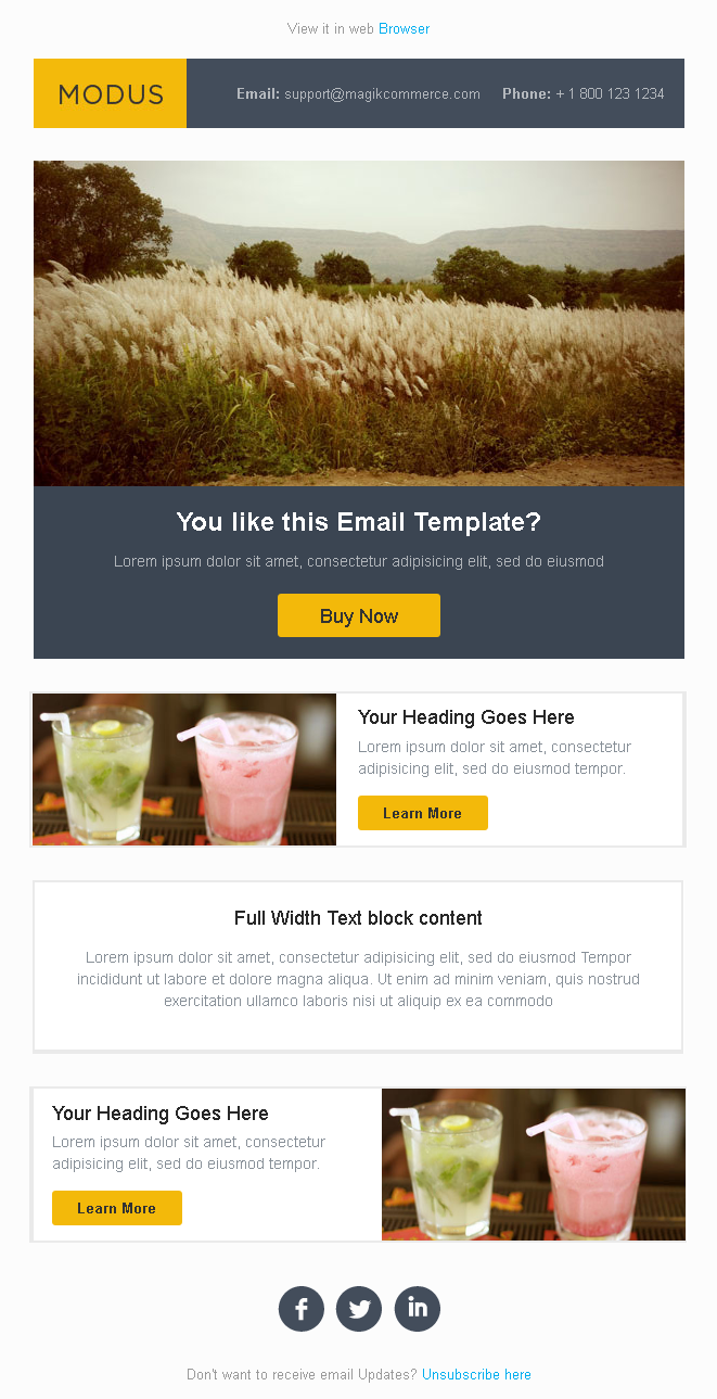 Modus Responsive Email Template-0