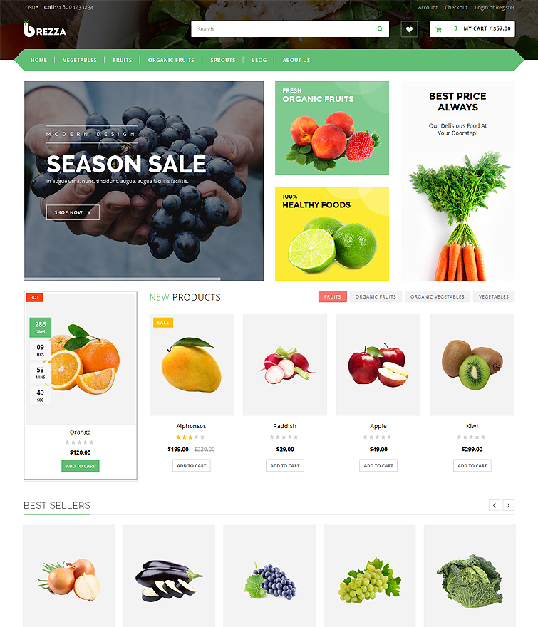 Multi Purpose Homepage with Multiple Layouts & Mega Menu