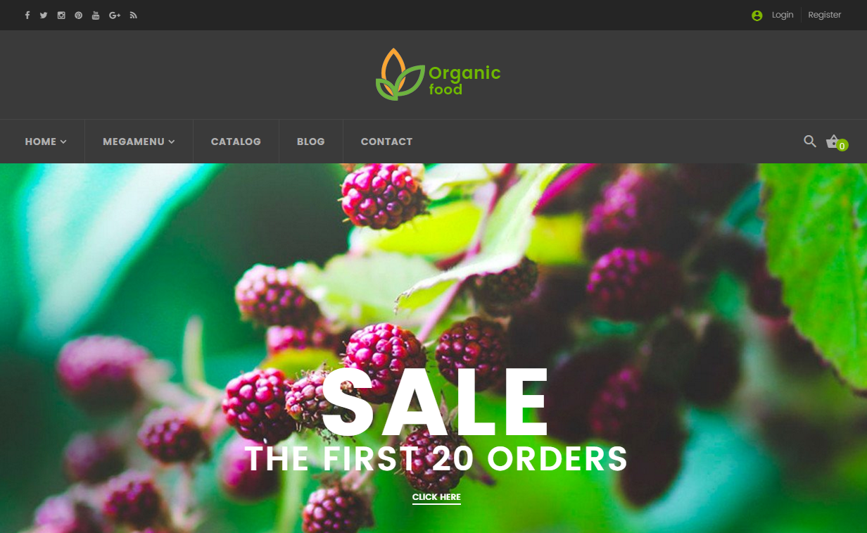 Responsive Shopify Fruit Store Theme